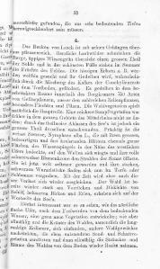 Das Nette- und Brohlthal und Laach(JPEG)-069